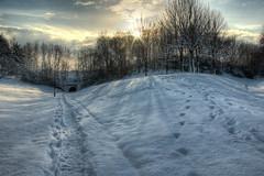 On the way to work (MarkE_T) Tags: trees snow sunrise shadows pentax yorkshire leeds hdr pentaxk10d smcpentaxda1855mmf3556al snowleedsyorkshire