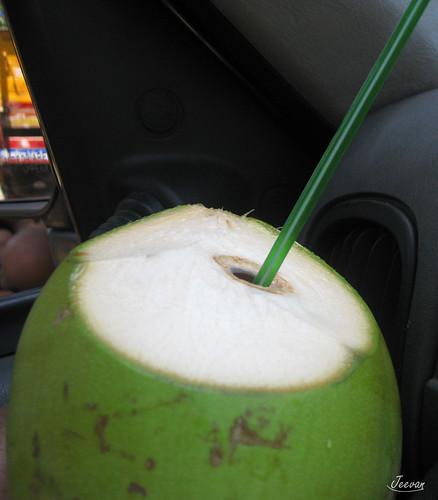 tender drink