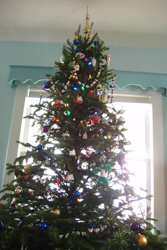 our live tree