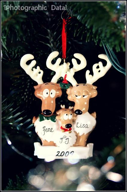 xmas ornament 2009
