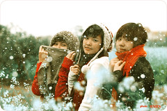 Tuyết đầu mùa :D (Oc†obεr•10) Tags: hot alex canon lens flickr no group hoa 70200mm tenten soten 50d vườn đầu mùa tuyết cải photographytenten