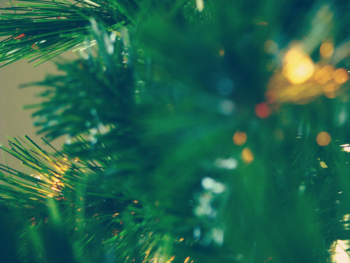 tree glow {3}