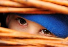 Restricted View (MrHRdg) Tags: eye freeassociation peek wicker nationaltrust berkshire maidenhead cliveden
