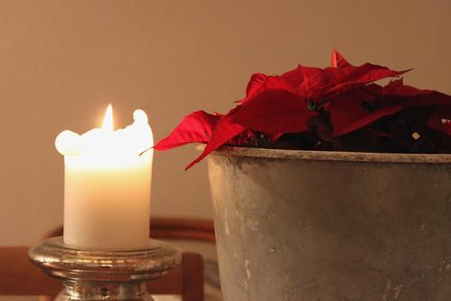3. Advent - zu Hause