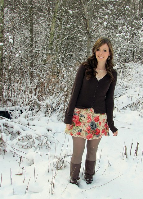 snowrose1