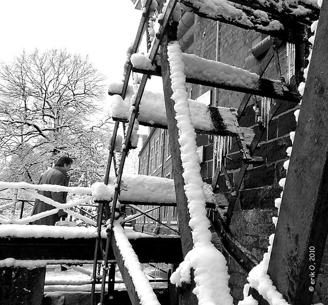 White Arenberg 2010