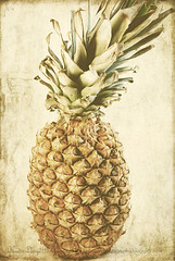 Vintage-pineapple---wm