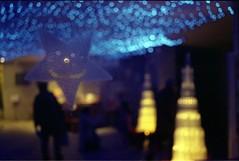 midnight sun (ZarulZakuan) Tags: film 35mm aires contax filmcamera 135 rts manualcamera toshare contaxrts fujifilmnatura1600 carlzeissdistagont35mmf28