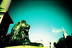 Trafalgar Square Lion (james_whitty) Tags: london film 35mm square toy lomo xpro lomography slim cross wide trafalgar plastic process vivitar processed vignette ultra londonist