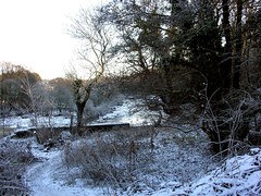 DSCN8082 (PIK Flyer) Tags: winter snow cold ice nature water river scotland scenery frost ayr iceflow frozenriver riverayr winter2010