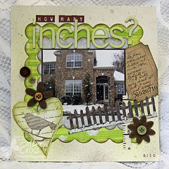 How Many Inches? (identicaltriplets) Tags: snow bird fence pixie f1439 heartbirdkeepsake