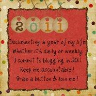 2011blogging