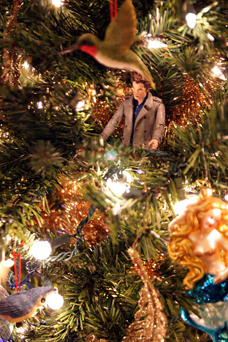 Tiny Edward in the tree.