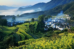 Wuyuan - The most beautiful countryside in China   -  (Meiguoxing) Tags: china   chine attraction  wuyuan  jiangxi