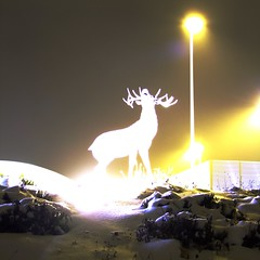 Mystic white stag (guenther_haas) Tags: longexposure white silhouette statue night stag experimental nightshot experiment deer finepix hart fujifilm mystic ulm s100fs