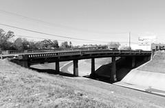 Shepherd Drive Bridge over White Oak Bayou, Houston, Texas 0101111305BW (Patrick Feller) Tags: bridge blackandwhite bw white black concrete drive blackwhite texas shepherd houston newyearsday whiteoakbayou 2011 harriscounty pontist
