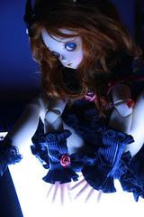 Kill the lights (Habashira) Tags: blue knights volks pw sdc abadon ladybee peakswoods sérafine
