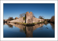 Bishop's Palace, Wells (-terry-) Tags: reflection castle wall cathedral wells somerset palace