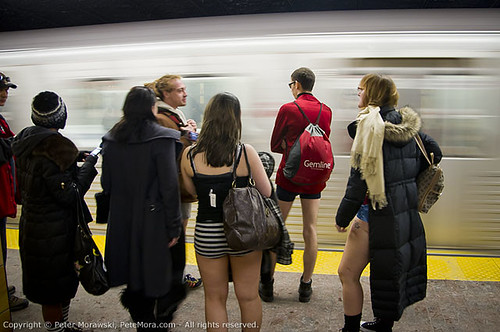 2011 No Pants Subway Ride: Train