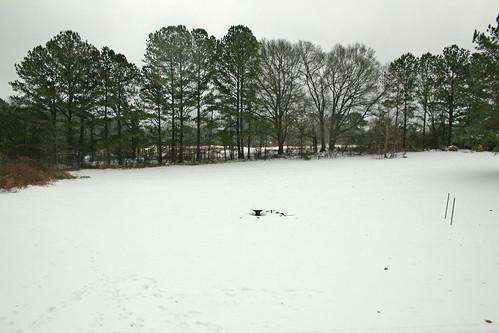 Icepocalypse15