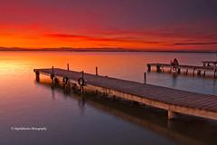 La Albufera de rojo (Pepelahuerta) Tags: winter red paisajes valencia raw lagos atardeceres lakers reflejos singhray laalbufera leefilters canon40d concordians ultraangulares pepelahuerta