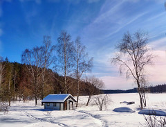 """Frozen lake (Bessula) Tags: sky lake snow tree nature forest landscape cottage hut coth bessula platinumheartaward 100commentgroup saariysqualitypictures """"flickraward"""" platinumpeaceaward photographymypassion sailsevenseas"""