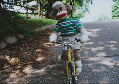 Sock Monkey Rides His Bike (monkeymoments) Tags: bicycle sockmonkeys monkeys bikeriding animalhumor sockmonkeyfun