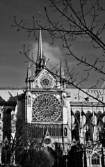 Notre Dame (A. Vandalay) Tags: paris france delete10 architecture delete9 delete5 delete2 nikon delete6 delete7 delete8 delete3 delete delete4 save notredame nikkor d300 nikond300 deletedbydeletemeuncensored