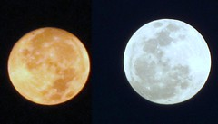 To Day is Full Moon Day - No Two Moon Day (Sunciti _ Sundaram's Images + Messages) Tags: sky nature night canon dawn dusk planet nightsky 1001nights lunar bestshot smorgasbord brightspark googleimage blueribbonwinner 10faves 5photosaday moonluna abigfave enstantane concordian anawesomeshot colorphotoaward agradephoto flickraward flickerdiamond brillianteyejewel concordians goldstaraward brilliantphotography rubyphotographer spiritofphotgraphy elitephotgraphy artofimages planetearthourhome lovelylovelyphoto winklerians suncitisundaram