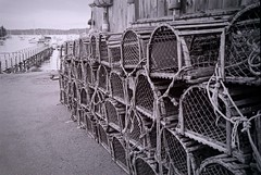 mmmm....lobster (Emily Taliaferro Prince) Tags: ocean summer blackandwhite bay harbor maine lobster traps lobstertrap