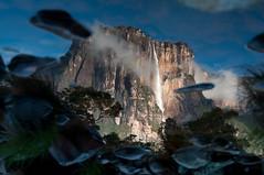 Reflect (Seor Hans) Tags: water waterfall agua venezuela reflejo salto angelfalls canaima gransabana cascada waterval saltoangel