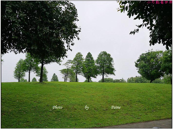 大溪埔頂公園 (21).JPG