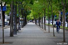Contre alle paseo de la Castellana (La Pom ) Tags: madrid spain espagne espana contre allee paseo castellana