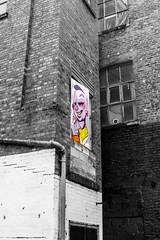 working your way up (PDKImages) Tags: art artinthecity manchesterstreetgallery manchester walls murals beauty woman lady girl pretty beautiful skull butterfly bee fish chicks alone joker thejoker sinister sneer hidden ladders checks skyline birds