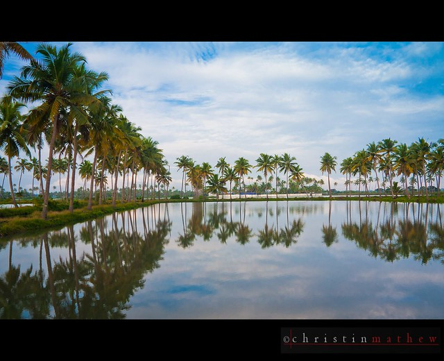 Kerala - The land of Coconut Trees