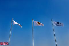 331/365 - Waving flags (.:shk:.) Tags: road grass compound middleeast flags palmtrees waving qatar shk alkhor rasgas canoneos500d qatargas shkarim sogirkarim sogskarim alkhorcommunity