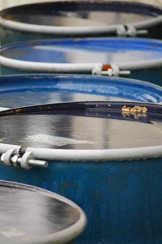 rain drums 1