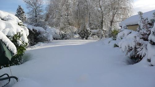 snowwedsafternoon