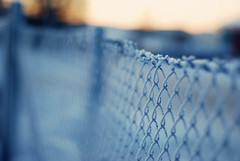 Frosted fence (e.kristina) Tags: sunlight snow cold fence frost friday wonter