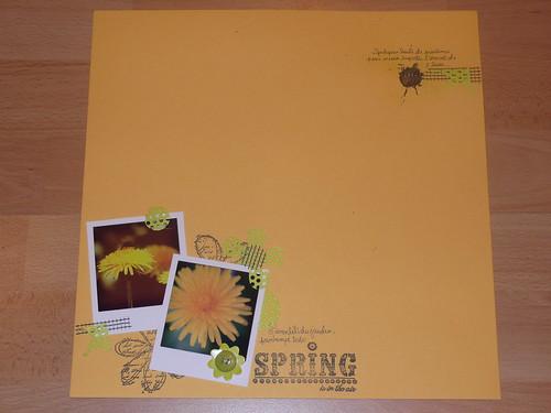 441_spring_01