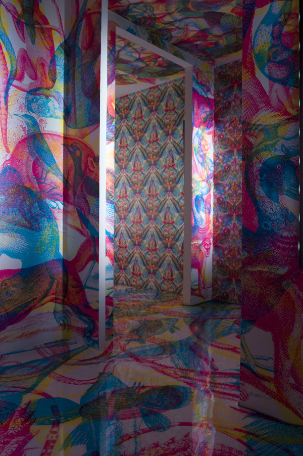 RGB - Le metamorfosi