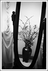 Waiting to be seen (The LightCatcher) Tags: blackandwhite bw stilllife mirror curtain frame vase floralarrangement canon400d canonef2870mm