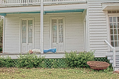 Face-Down on the back porch~~Ammon Underwood House (sherrYgibsoN~here & there...) Tags: sneakers converse sherry chucks chucktaylors 2010 facedown chuckandme eastcolumbiatx facedowntuesday hfdt happyfacedowntuesday ilovechuck ammonunderwoodhouse