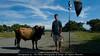 A Bullfighter and his Champion Bull, Iloilo Day 7 Crossing Bridges 7 Nov 18-24 2010 (ted adnan) Tags: tedadnan malaysianprofessionalphotographer strobist malaysianstrobist tedadnanphotographydesign iloilocrossingbridges7 nov18242010