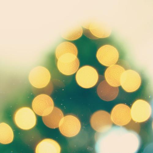 tree glow {4}