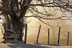 (jonlp) Tags: mist snow landscape euskalherria basquecountry navarre elurra nafarroa aralar baraibar lanbroa paisajea