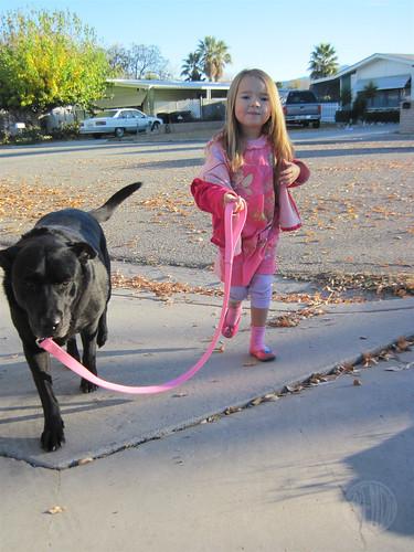 walk-the-dog atire