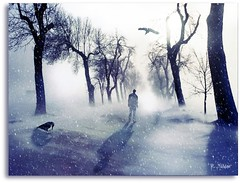Snowy Way (Roy Mildor - I am how I am !) Tags: winter shadow snow tree art quote expression ourtime callingallangels greatphotographers fantasticnature platinumheartaward platinumgolddoubledragonawards artistictreasurechest qualitysurroundings perfectioninpictures mygearandmepremium art2010 abokehoflight ringexcellence dblringexcellence whaticallart lovelymotherearth avatarswithanoseforattitude extraordinarilyimpressive slcollectionofmarvelousworks truthandillusion aboveandbeyondlevel4 aboveandbeyondlevel1 aboveandbeyondlevel2 aboveandbeyondlevel3