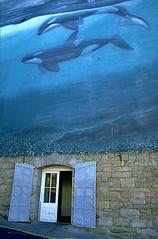 Vancouver, British Columbia, Canada, 1990 (Photox0906) Tags: door blue sea mer canada wall vancouver britishcolumbia bleu porte orca mur trompeloeil orque colombiebritannique flickrbronzeaward flickrsilveraward