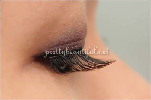 DJ Brand Handmade Eyelashes (DJ-12) side view